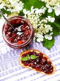 Jar of cranberry jam, selective focus. Preserved food. Morning still life. Food for breakfast or snack. Jam with bread Royalty Free Stock Photo