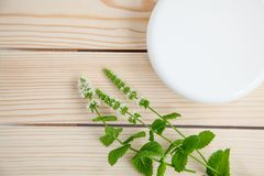 Jar of cream with sprigs of fresh mint on a wooden background. Top view. Jar of cosmetic skin care cream next to a sprig of fresh mint on a wooden background royalty free stock images