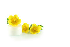 Jar of cream and yellow flowers. On a white background Royalty Free Stock Photography