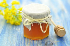 Jar of delicious honey in a jar with rapeseed flowers royalty free stock images