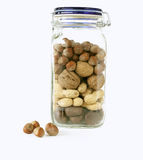 Jar with different nuts. On white background royalty free stock photography