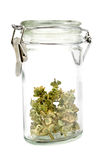 Jar with dried basil Stock Photo