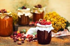 Jar filled with homemade apricot jam Stock Photos