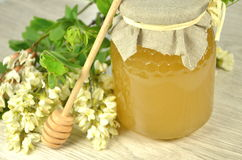 Jar of fresh delicious honey with acacia flowers a Stock Photo