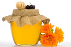 Jar of fresh honey with drizzler and flowers isolated on white background Stock Photos