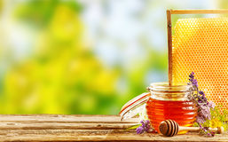 Jar of fresh honey with flowers and honeycomb Stock Photo