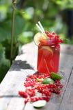 Jar of fresh juice Stock Images