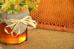 Jar full of delicious fresh honey linden flowers and honeycomb frame Stock Image