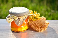 Jar full of delicious fresh honey piece of honeycomb and wild flowers Stock Image