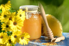 Jar full of delicious honey, honeycomb and bee pollen Royalty Free Stock Photos