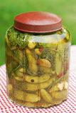 Jar of gherkins with dill Royalty Free Stock Photography