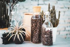 Jar of glass with a Wine corks lid with Coffee beans on old wooden Counter royalty free stock image