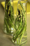 Jar of green asparagus Stock Image