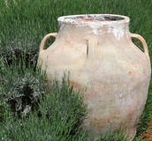 Jar in Green Grass royalty free stock images