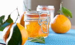 Jar of homemade orange jam with wide aspect ratio. Photo of a jar of homemade orange jam with wide aspect ratio and shot with selective focus Stock Images
