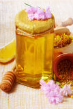 Jar of honey Royalty Free Stock Images