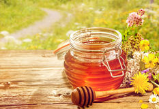 Jar of honey with dipper with flowers Stock Image