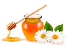 Jar of honey and a dipstick with flower. Stock Image