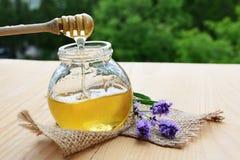 Jar of honey Stock Images