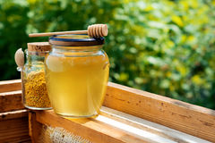 A jar of honey and a jar of bee pollen in the hive. Honeycomb. Beekeeping products. Royalty Free Stock Photography