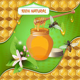 Jar of honey with wooden dipper Royalty Free Stock Image