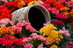 Jar in the middle. Of a flower garden royalty free stock photography