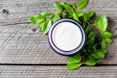 Jar of moisturizing facial cream with leaves top view. Copyspace Royalty Free Stock Photo