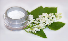 Jar natural cream sprig bloom white lilac cosmetic set. On grey background. Feminine, beauty and cosmetics concept Royalty Free Stock Photos