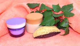 Jar natural cream sprig set Feminine, beauty and cosmetics conce. Pt, green branch of  birch branches, soaps, luffa, sponge, spa, spa treatments, nettle on pink Stock Photo