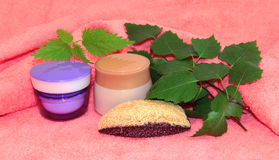 Jar natural cream sprig set Feminine, beauty and cosmetics conce. Pt, green branch of  birch branches, soaps, luffa, sponge, spa, spa treatments, nettle on pink Stock Photos