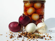 Jar with onions and spices. Jar of pickled onions with fresh onions and spices Royalty Free Stock Photography