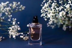 A jar of perfume on a black background with gypsophila stock photo