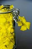 Jar with petals Stock Images