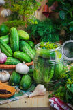 Jar pickles other ingredients pickling Royalty Free Stock Photos