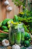Jar pickles other ingredients pickling Royalty Free Stock Image