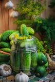 Jar pickles other ingredients pickling Royalty Free Stock Photos