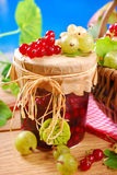 Jar of preserve with fresh red,white currant and gooseberry Royalty Free Stock Photo