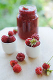 Jar of raspberry jam and  berries outdoor Royalty Free Stock Photography
