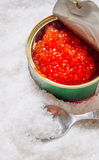 Jar with red caviar and spoon of salt. Stock Photography