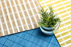 Jar of rosemary on placemats colored wood Royalty Free Stock Images