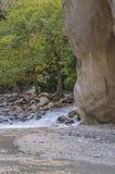 Jar Saklikent, gładkie skały jar ściany, iluminować ranku słońcem z figa krzakiem Zdjęcie Royalty Free