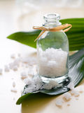 Jar of sea salt Stock Images