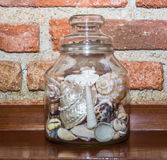 Jar of shells Stock Images