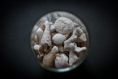 Jar of shells. Dream journeys and desires Royalty Free Stock Image