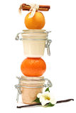 Jar with some creamy substance fruit and spice Stock Photography