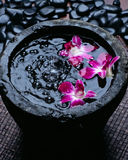 Jar spa with floating orchid Royalty Free Stock Photo
