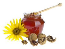 Jar of sun flower honey Royalty Free Stock Photography