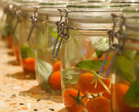 Jar of tomatoes Royalty Free Stock Image