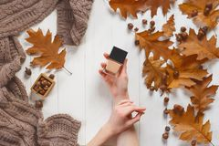 Jar with a tonal cream in the hands of a girl. Top view. Natural beauty cosmetics concept. Autumn beauty Stock Images