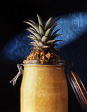 Jar wit a pineapple Royalty Free Stock Image